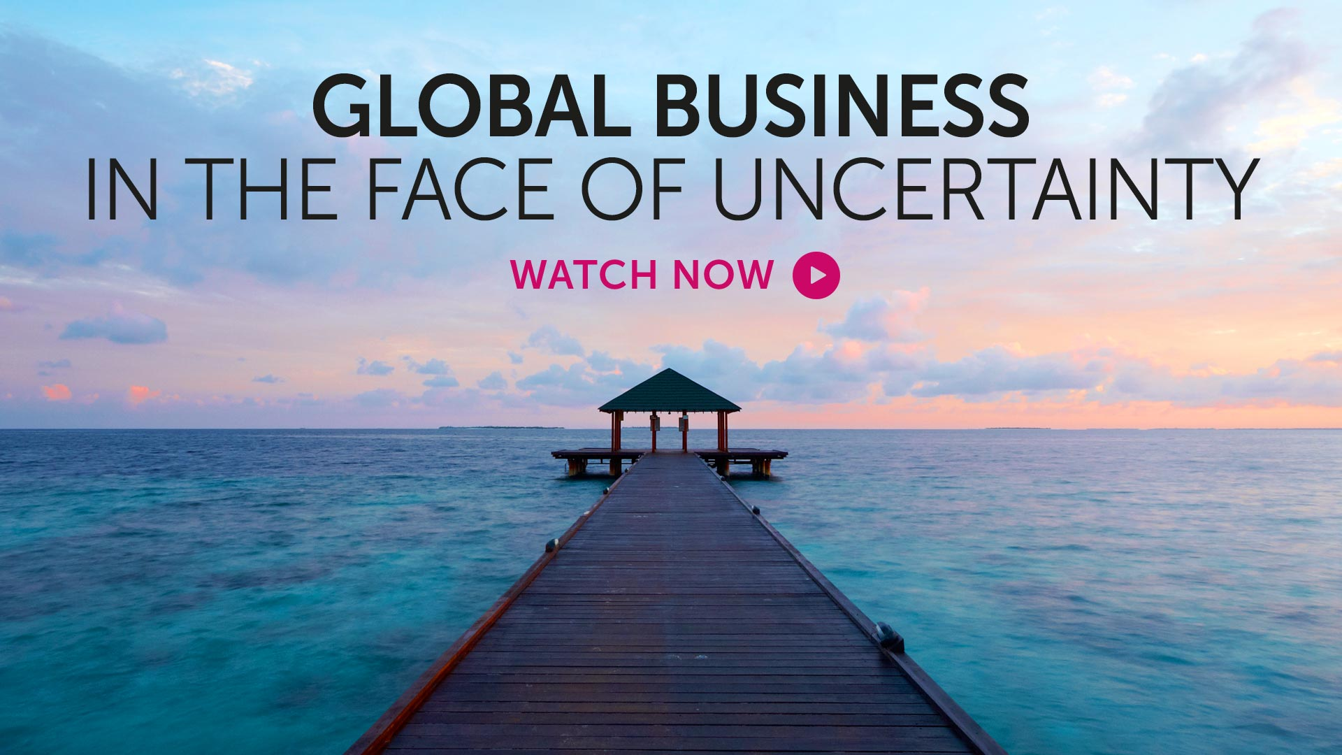 Briefing: Global business in the face of uncertainty